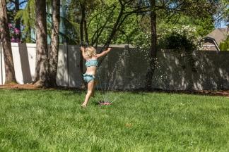 backyard-6