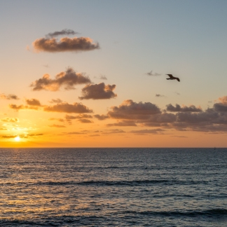 sunsetcliffs-2