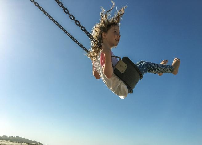 swingltrm-3.jpg