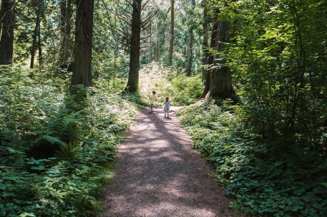 woods.beach4X1A4584