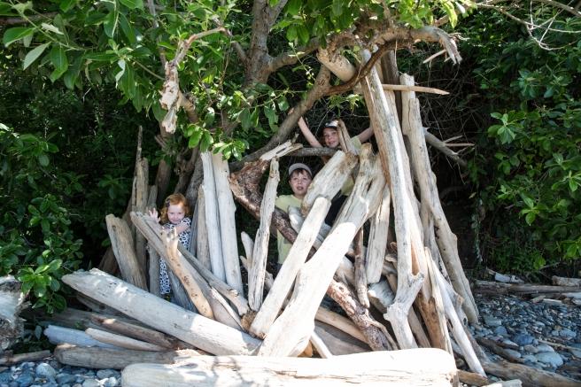 woods.beach4X1A4738