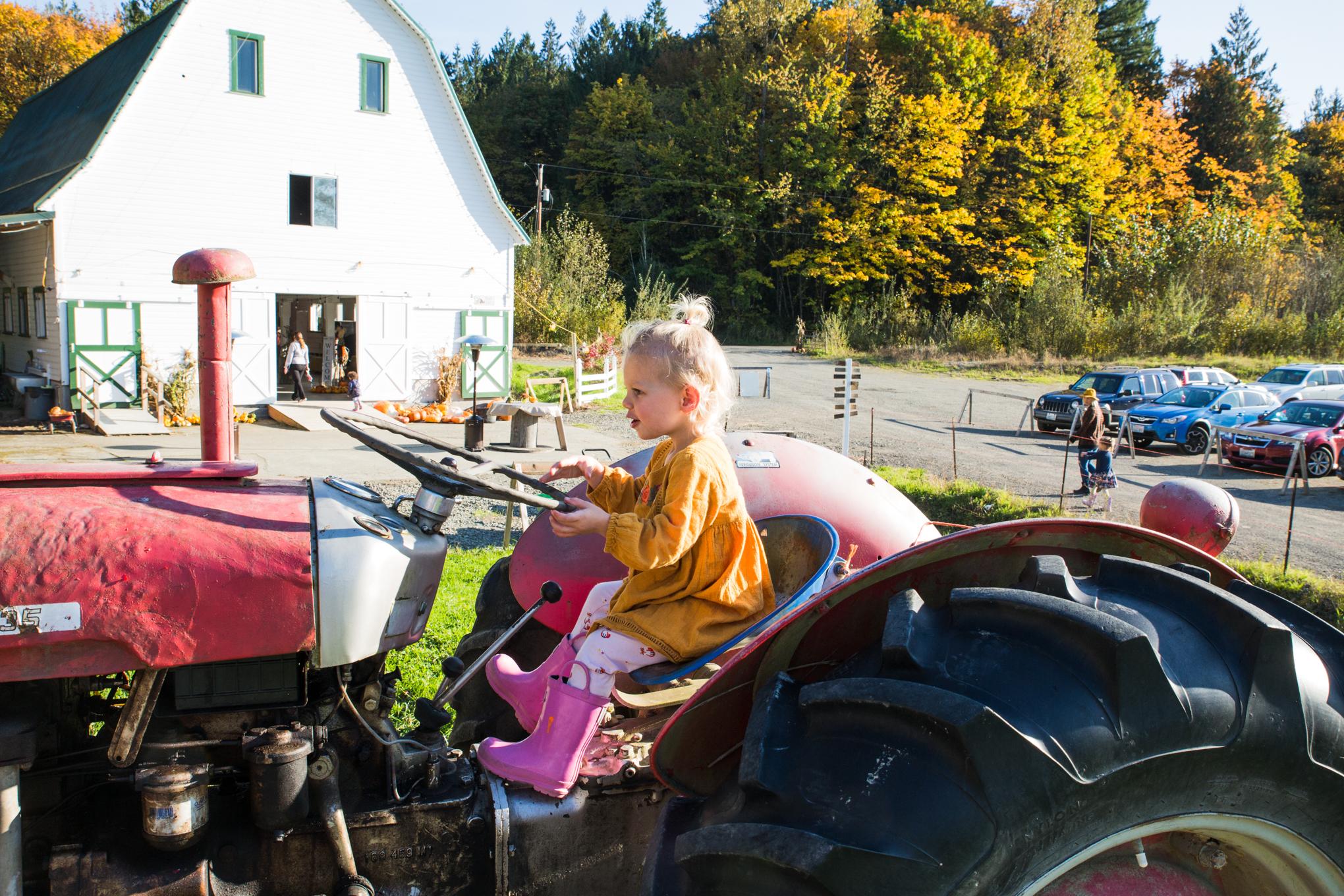 pumpkinfarm4X1A6368