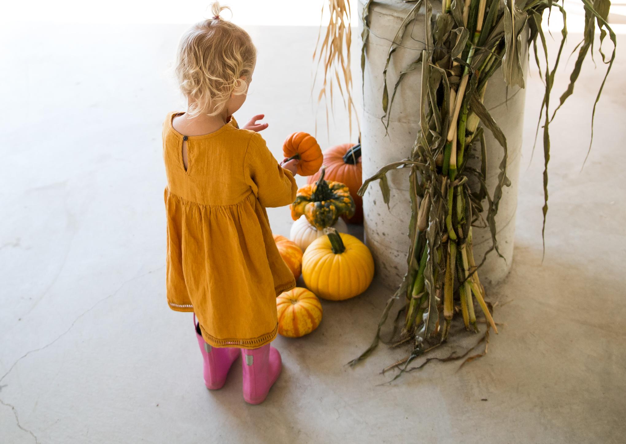 pumpkinfarm4X1A6474