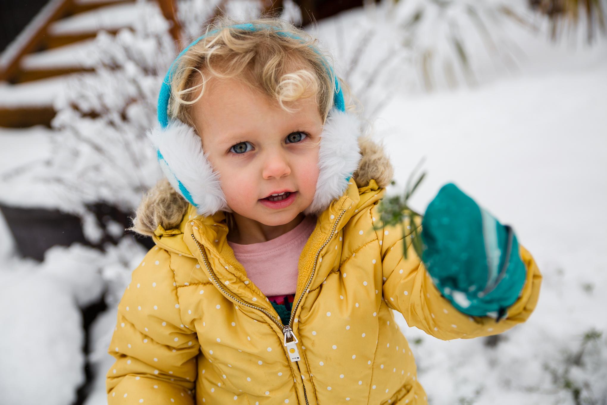 snow2020-2345