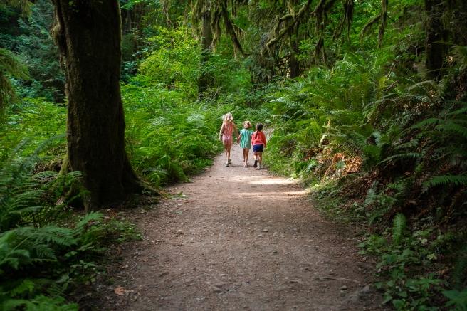 hike.08.2020-7405