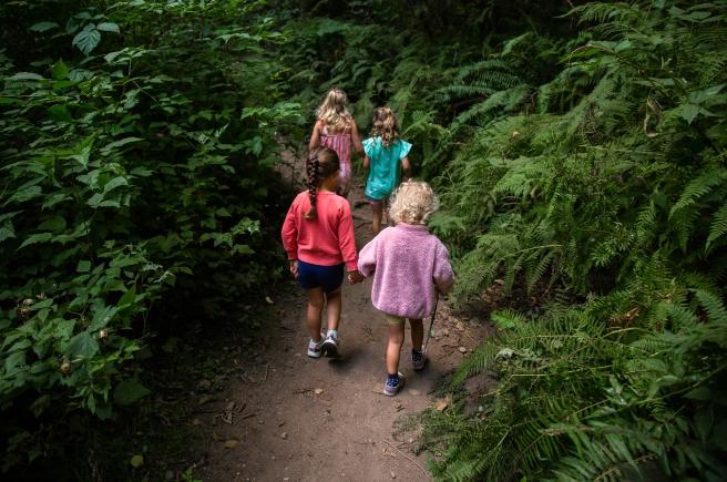 hike.08.2020-7428